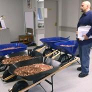 Finanzamt akzeptiert Schubkarren voller Münzen